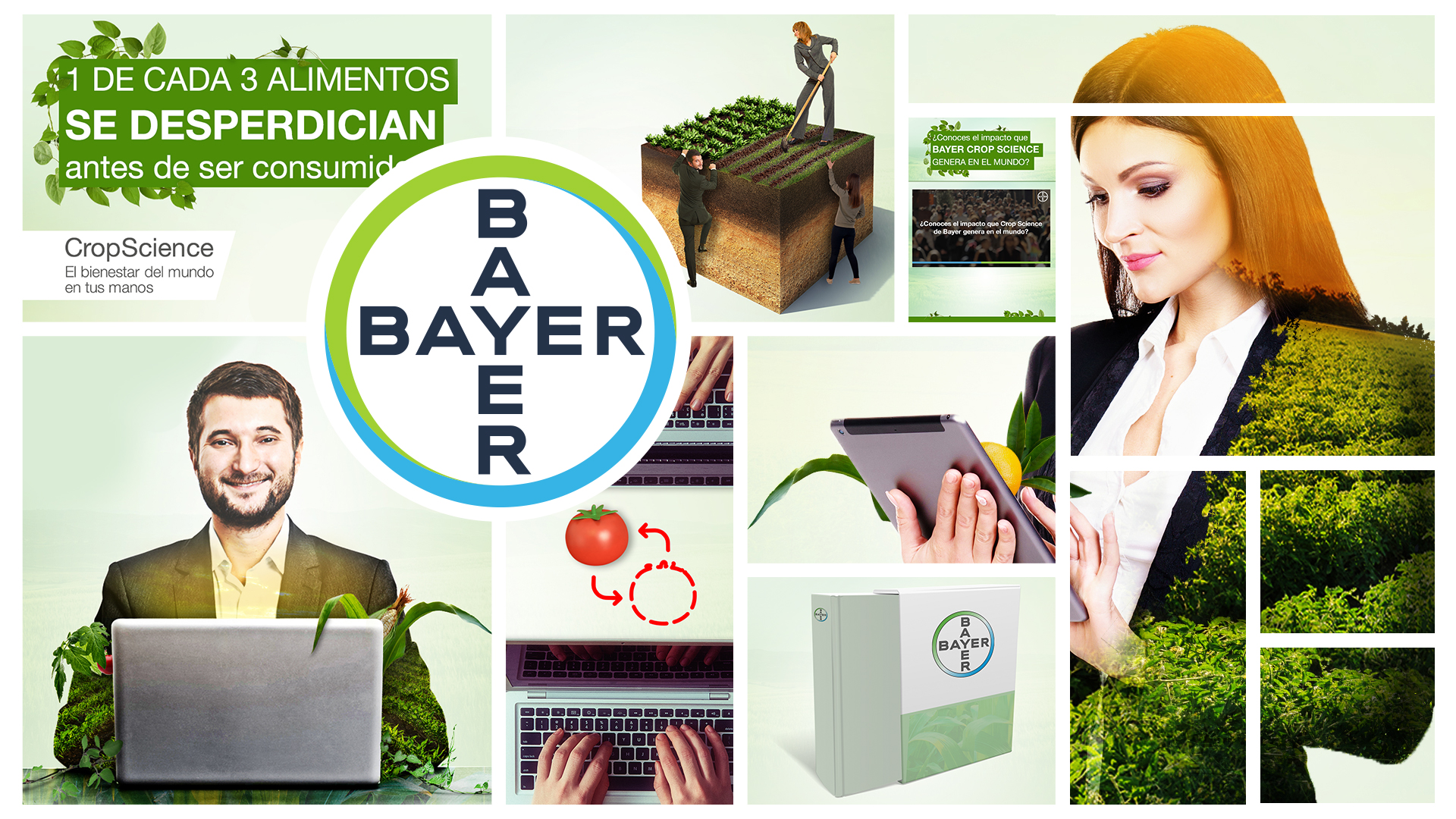 Mood_board_bayer_2